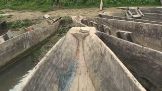Chitwan National Park in Nepal