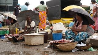 Elderly ladies selling fish at the market in Negombo, west coast, Sri Lanka