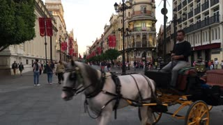 Horse and carriages passing by at Av. de la Constitucion in Seville Spain