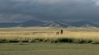 Mongolian Nomad on a horse with next to him on other horse