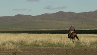 Mongolian Nomad on a horse