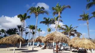Palmtrees and Beach Umbrellas at Palm Beach on Aruba