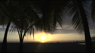Palmtrees and sunset at Jaco beach Costa Rica