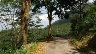 Pan from a tuk tuk to a mountain range Landscape, Sabaragamuwa region, Sri Lanka