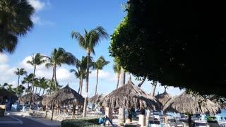 Passing by Playa Linda Beach Resort at Palm Beach on Aruba