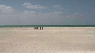 People walking at Shell Beach in the Shark Bay National Park, Western Australia