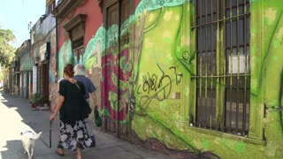People walking with a dog through a street with art at houses in Santiago de Chile