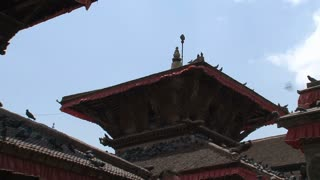 Rooftop temple with pigeons tilt to statue at Durbar Square