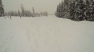 Skiing at a busy misty piste