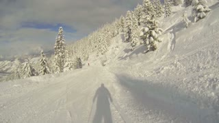 Skiing on a beautiful sunny day between the hills and trees