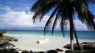 Small blue bay with a boat and palmtrees at the coast in Tulum Yucatan, Mexico