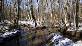Small river with snow in Biogradska Gora a forest and a national park in Montenegro