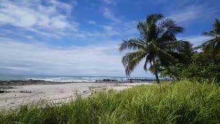 Surfer walking at Playa Santa Teresa in Costa Rica