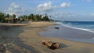 Tangalle beach with a tree trunk in Sri Lanka
