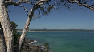 Tree View from the coastal walk Noosa National Park, Queensland, Australia