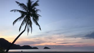 Palmtree and sunset on Koh Chang Thailand