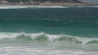 Waves and a group dolphins at Twilight Beach in Great Ocean Drive, Esperance, Western Australia