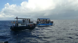 Whale watching boats at sea in Sri Lanka