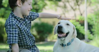 Boy petting a big white dog