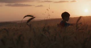 Boy with superman cape running in a golden wheat field.