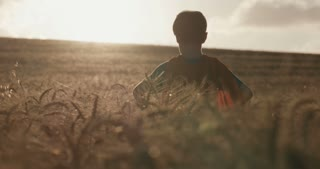 Boy with superman cape standing in a golden wheat field. raising his hands in victory