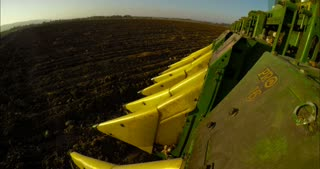 POV shot from a cotton picker working in a cotton field