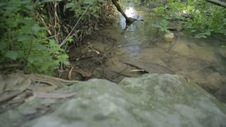 Small water stream flowing