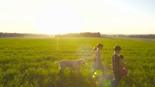 Steadicam shot of three young kids walking with a dog in a green field during sunset