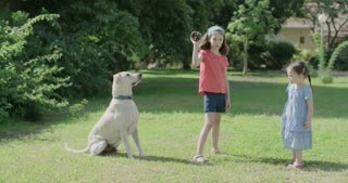 Two girls playing with a big white dog