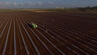 Aerial footage of farm workers working in a field with tractors