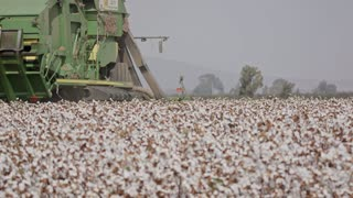 Cotton picker harvesting a cotton field creating large cotton bales