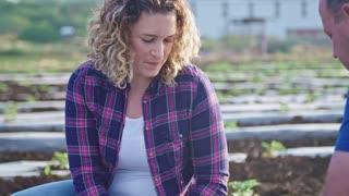 Femlae farmer talking in a field during morning