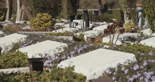 Graves and tombstones in a military cemetery in Israel