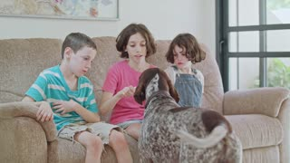 Three kids playing with a German pointer dog inside a house