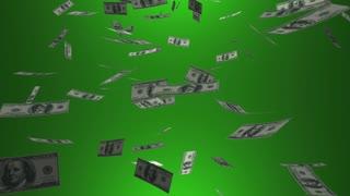 Certified Financial Planner Cfp Adviser Money 3 D Animation