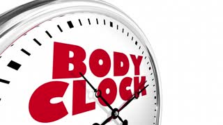 Body Clock Health Timer Lifestyle Living 3 D Animation