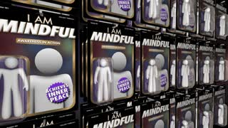 Mindfulness Awareness Peace Of Mind Action Figure 3 D Animation