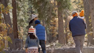 Asian family hiking together in a forest, back view