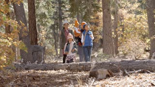 Asian family of five enjoying a walk together in a forest