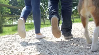 Close Up Of Couple's Feet Taking Dog For Walk In Countryside