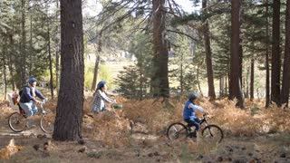 Family cycling through a forest together, left to right pan