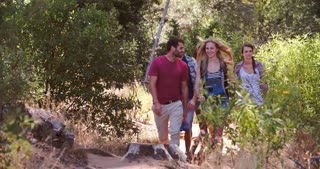 Five friends walking on a forest trail towards the camera