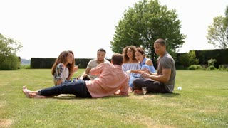 Friends making a toast at a picnic, full length, low angle