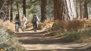 Grandparents and kids riding bikes in forest, front view