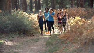 Group of young adult women running in a forest, slow motion