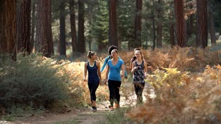 Group of young women runners walk in a forest talking