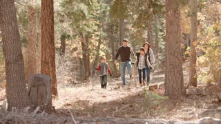 Hispanic family walking in a forest, full length front view