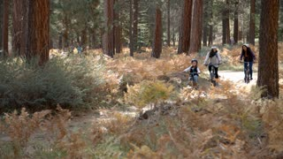 Lesbian couple cycling in a forest with their daughter
