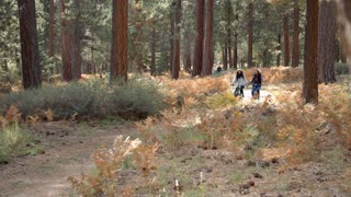 Lesbian couple riding bikes in a forest holding hands