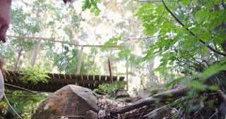 Low angle view of group walking in forest, crossing a bridge